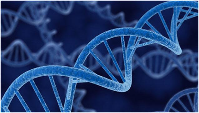 NUESTRO ADN: JESUCRISTO - POR: OSVALDO CARNIVAL 2