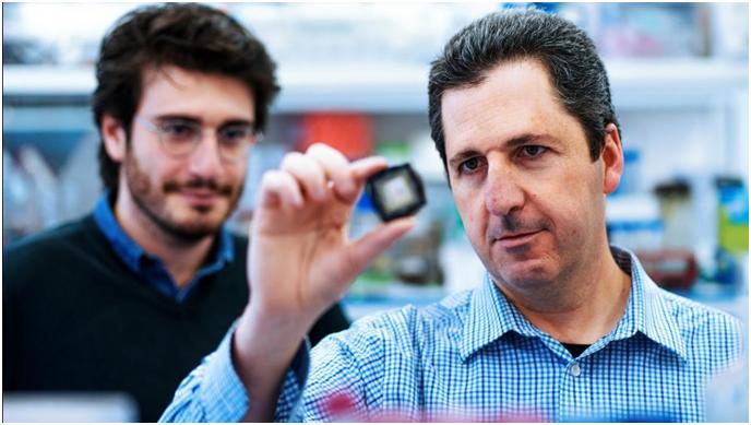 Científicos israelíes identifican medicamentos que esperan puedan degradar COVID-19 a nivel de resfriado común